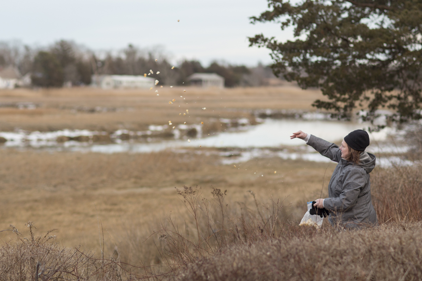 Ramona throws food to birds in a marsh.