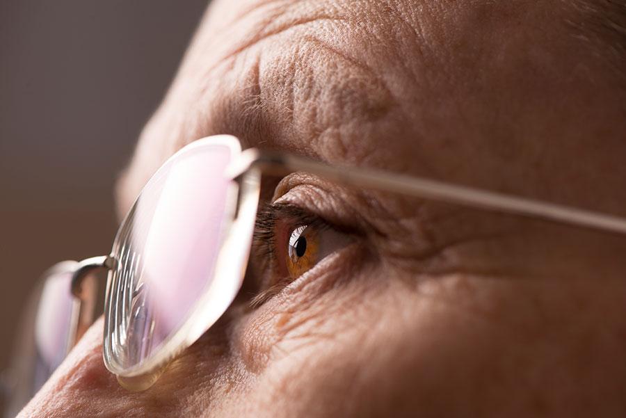 Vision Improving Eye Food For Better Eyesight - The Cantaloupe