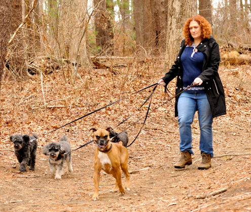 West Warwick veterinarian Paige Plumb walks her dogs in a park.